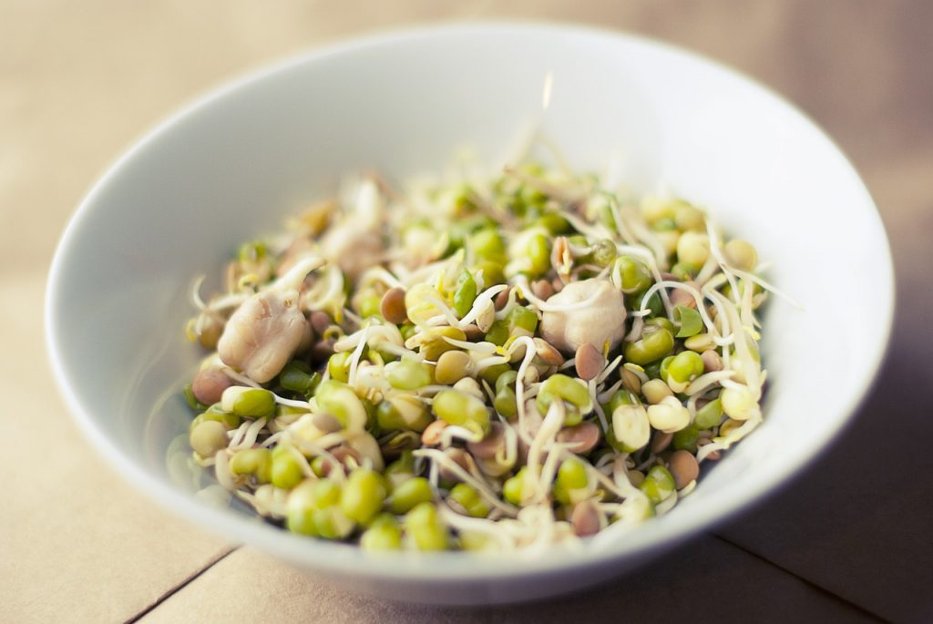 蒸し大豆ダイエットのやり方は?簡単レシピも合わせて紹介!